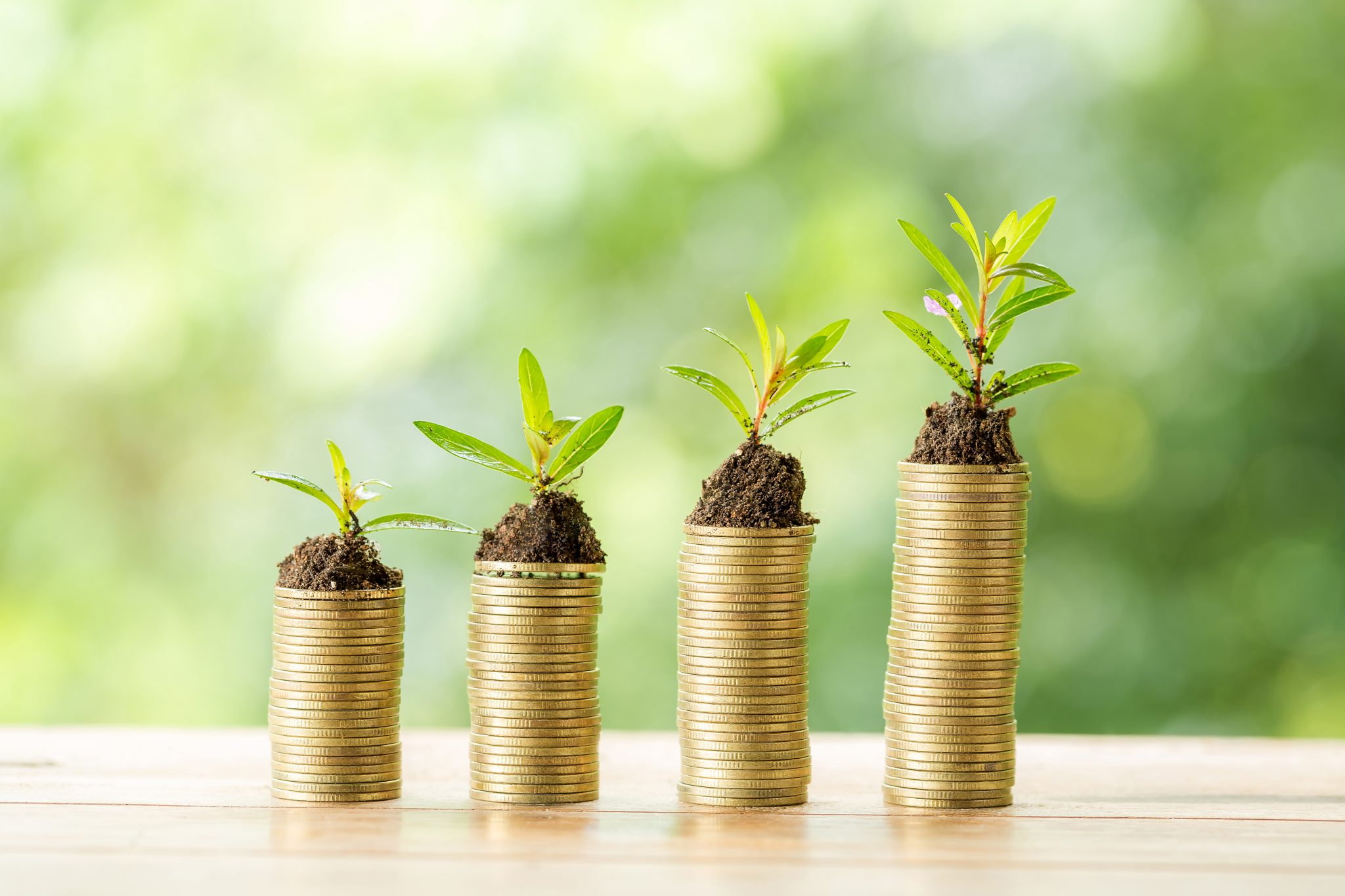 Les investissements locatifs : quel choix possible en 2021 ?